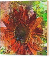 Sunflower 7 Wood Print