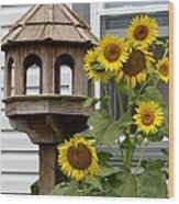 Sunflower Bird Feeder Wood Print