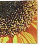 Sunflower Edge Wood Print