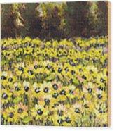 Sunflower Field Series W Silver Leaf By Vic Mastis Wood Print