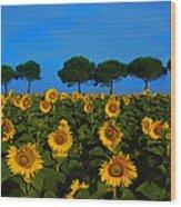 Sunflower Field Wood Print