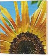 Sunflower Meets Sky Wood Print