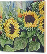 Sunflower Serenade Wood Print