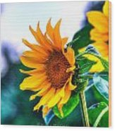 Sunflower Smile Wood Print by Sarai Rachel