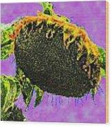 Sunflowers Birmingham Digital Wood Print