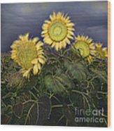 Sunflowers Digital Painting Wood Print