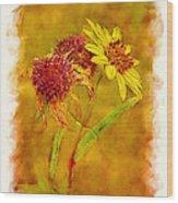 Sunflowers In Fall Wood Print