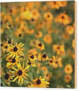 Sunflowers Wood Print by Michelle Peric