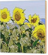 Sunflowers Sunbathing Wood Print