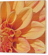 Sunglow Wood Print