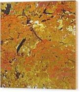 Sunkissed 3 Wood Print