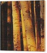 Sunlight On Aspen Trees, Twin Falls Wood Print