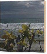 Sunlight On Kovalam Beach Wood Print
