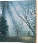 Sunlight Pierces The Morning Mist Wood Print
