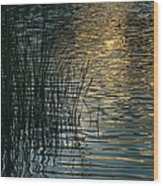 Sunlight Reflects On Rippled Water Wood Print
