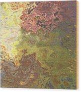 Sunlit Bricks Abstract Wood Print