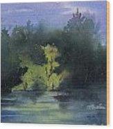 Sunlit Island Wood Print