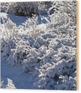 Sunlit Snowy Sanctuary Wood Print