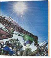 Sunny At The Fair Wood Print by Dan Crosby