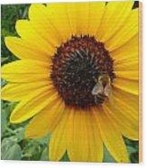 Sunny Bee Wood Print