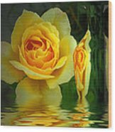 Sunny Delight And Vase 2 Wood Print