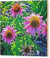 Sunny Pink Wood Print