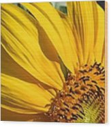 Sunny Side Up Wood Print