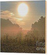 Sunny Side Up Wood Print