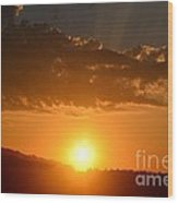 Sunny Side Upward Wood Print