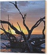 Sunrise At Driftwood Beach 5.2 Wood Print