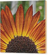 Sunrise Floral Wood Print