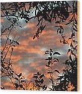 Sunrise Leaves Wood Print