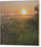 Sunrise On A Dew-covered Cattle Pasture Wood Print