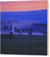 Sunrise Over Field With Trees Wood Print