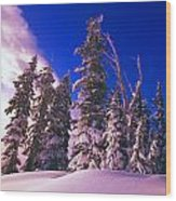 Sunrise Over Snow-covered Pine Trees Wood Print