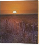 Sunrise Over The Pampa Of Argentina San Wood Print