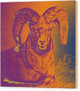 Sunrise Ram Wood Print