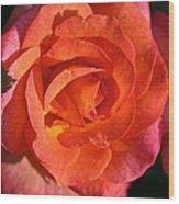 Sunrise Rose Wood Print