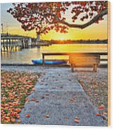 Sunrise Seista Drive2  Wood Print by Jenny Ellen Photography