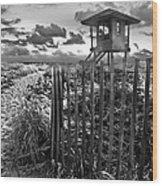 Sunrise Sentinel In Black And White Wood Print