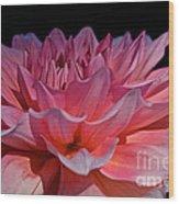 Sunrise Shades Of Pink Wood Print