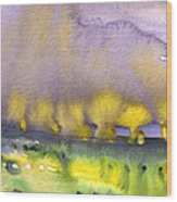 Sunset 38 Wood Print