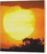 Sunset And Bird Wood Print