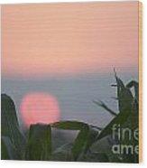 Sunset And Corn Wood Print