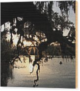Sunset At Blue Springs Wood Print