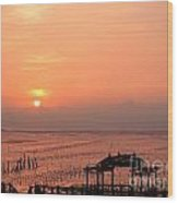 Sunset At Cigu Bay Wood Print