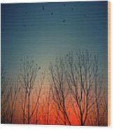 Sunset Behind Trees Wood Print by Luis Mariano González