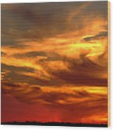 Sunset Bull  Wood Print