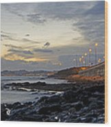 Sunset By The Sea Wood Print