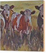 Sunset Cows Wood Print